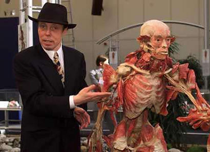 Gunther von Hagens and plastinate